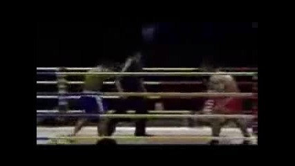 Best Of The Best Muay Thai Knockout Collection