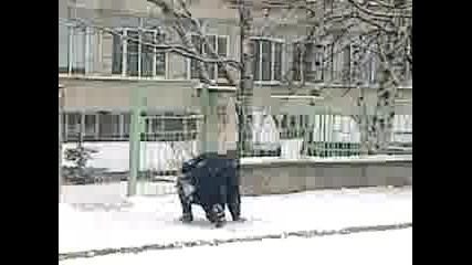 охрана пада пред училище