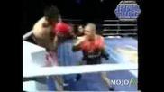 K1 Kickbox  Mike Zambidis Compilation Knockouts