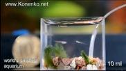 Най - малкия аквариум в света