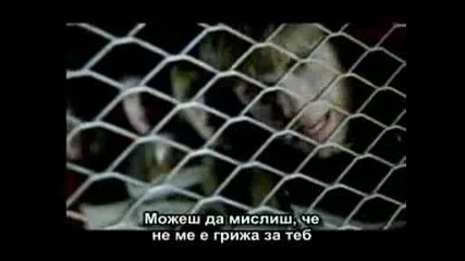 Take That - How Deep Is Your Love - Превод