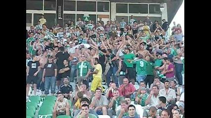 Beroe Ultras!!!