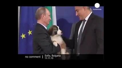 Борисов подарява куче на Путин