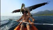Страхотни кадри! Благодарение на Go Pro Hero,гледайте как двама приятели ловят риба всяка сутрин