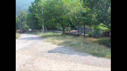 Балкан 2010