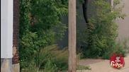 Полицай - розов слон (скрита камера) (hq)