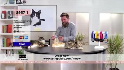 Котешки слушалки...wtf