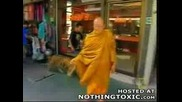 Тигрите На Монасите