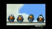 Stupidbird.3gp