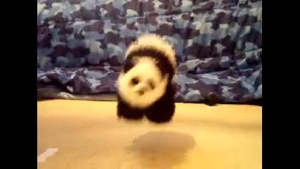 танцуваща панда (куклено шоу)
