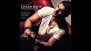 Shahab Mozaffari - Hallam Bade [ 2013 ]