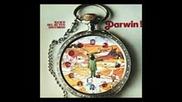 Banco del Mutuo Soccorso - Darwin(full album )
