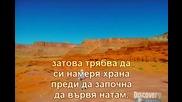 Ultimate Survival - пустинята Моаб - с превод [част2/2]