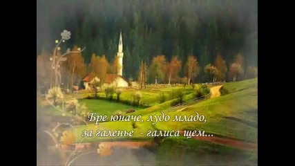 Жинка Толсузова - Моме моме малка моме
