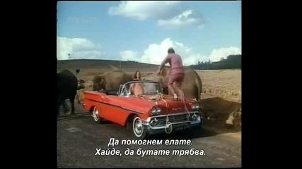 слона, моят приятел - - видео микс