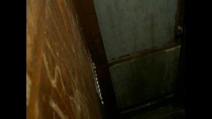 Elevator (the trap)