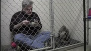 Уплашено куче отказва да яде, затова вет.лекар се присъединява в клетката му за вечеря!
