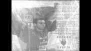 Zoran Vujovic (grobari) 1988 - 2008 R I P