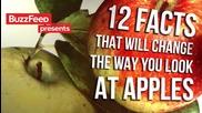 12 факта, които ще променят вижданията ви за ябълките