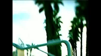 От местопрестъплението: Маями - 8x13