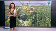 Прогноза за времето (24.06.2016 - обедна емисия)