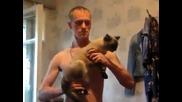 Смях ... Руснаците са невероятни. Котка Ак-47