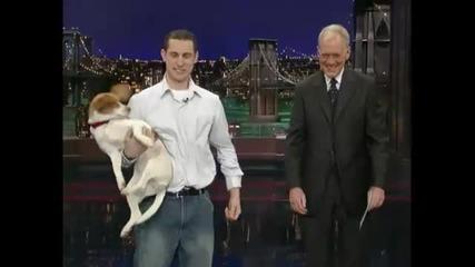 Умиращо Куче