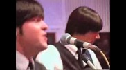 Beatles Tribute Band Hippy Hippy Shake