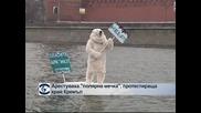 """Арестуваха """"полярна мечка"""", протестираща край Кремъл"""