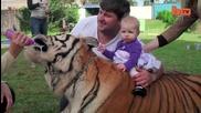 Живот с тигър - Семейство Споделя живота си с Тигър