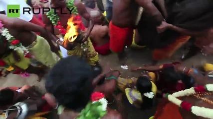 Кокоси биват разбивани в главите на хората по време на духовен фестивал в Индия
