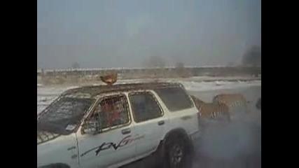как да събереш гладни сибирски тигри около теб