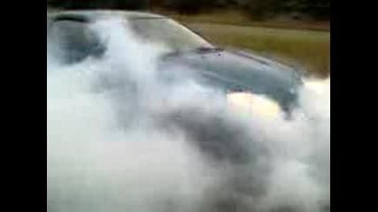 Mazda Mx3 Koci prai ludnica