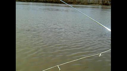 Test Drive Atom Wave Runner Bait Boat-марица by Abrashev
