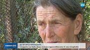 ДО ВТОРО НАРЕЖДАНЕ: Стадото на баба Дора остана единственото в Шарково