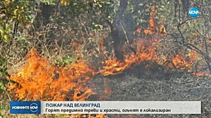 Пожар е обхванал 60 дка иглолистна гора над Велинград
