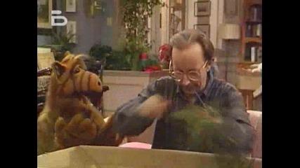 Alf.1x12
