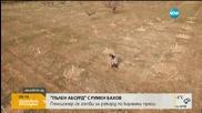 """""""Пълен абсурд"""": Пенсионер се готви за рекорд по коремни преси"""
