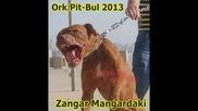 New Ork Pitbol - 2013 Mangardaki 2013 Dj Feissa