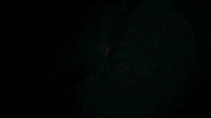 Delta Goodrem - Believe Again (ron Van Den Beuken Remix).flv