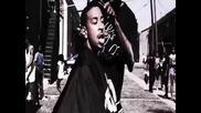 Ace Hood Feat. Ludacris - Born An Og