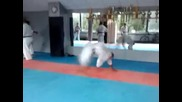 Okinawa Karate Bulgaria - Shorin Ryu лиготиииии