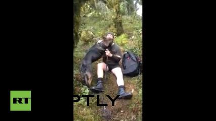 Нова Зеландия: Полицейско куче отново със стопанина си след седем дни изгубено в непознатото