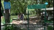 Собственик на имот до Камчия засипва реката с пясък