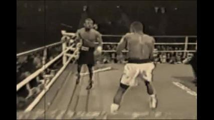 Hай - Бързите ръце в бокса