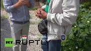 Унгария: Полицията задържа потенциален контрабандист на хора