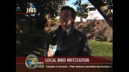 Смях птица се изхожда в устата на репортер