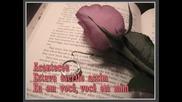 Lara Fabian - Meu grande amor (моята голяма любов)