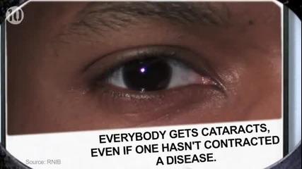 10 Неща , Които не Знаете за Очите си