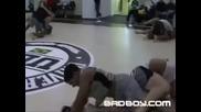 Вижте как се подготвят най-големите в света на смесените бойни изкуства